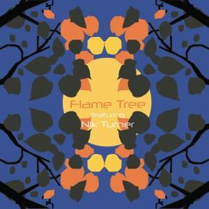 Flame Tree - Flame Tree