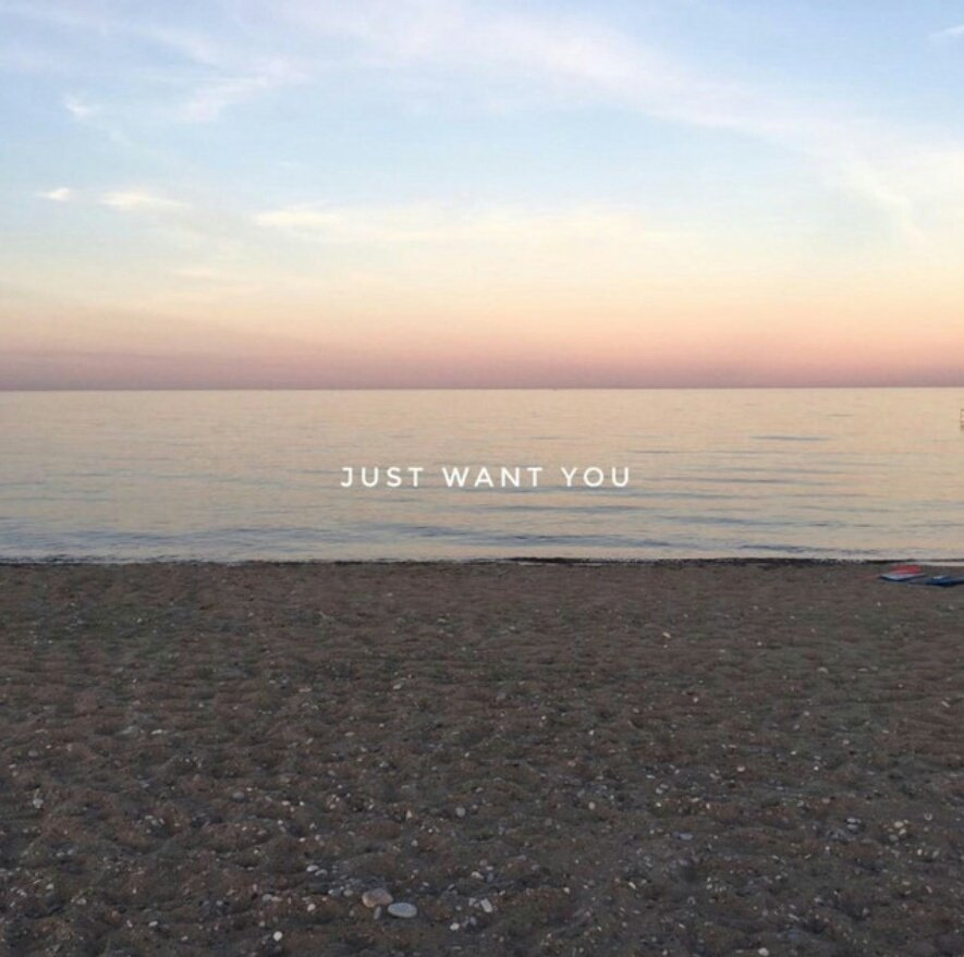 Bayonet - Just Want You
