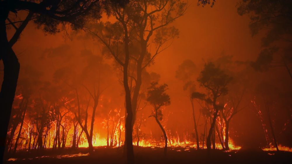 Bushfires rage